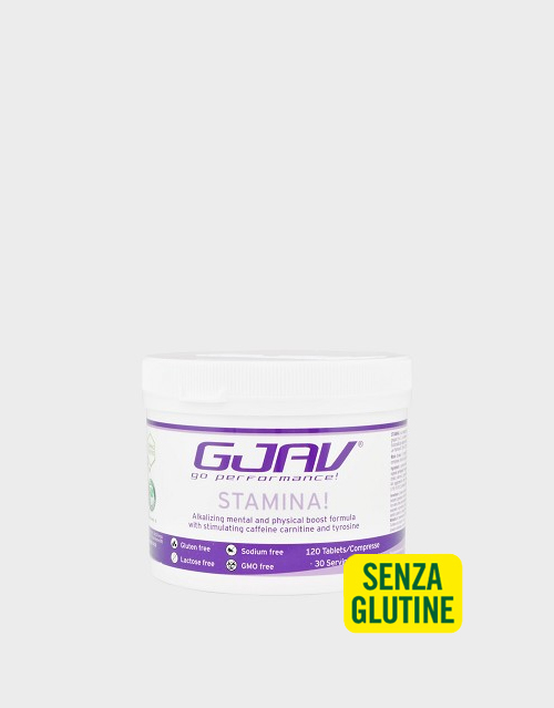 gjav-stamina-120-compresse-168-g